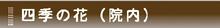 恩田第2病院の四季の花
